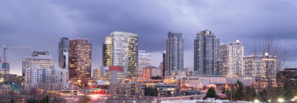 Bellevue evening skyline