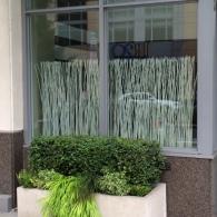 window privacy